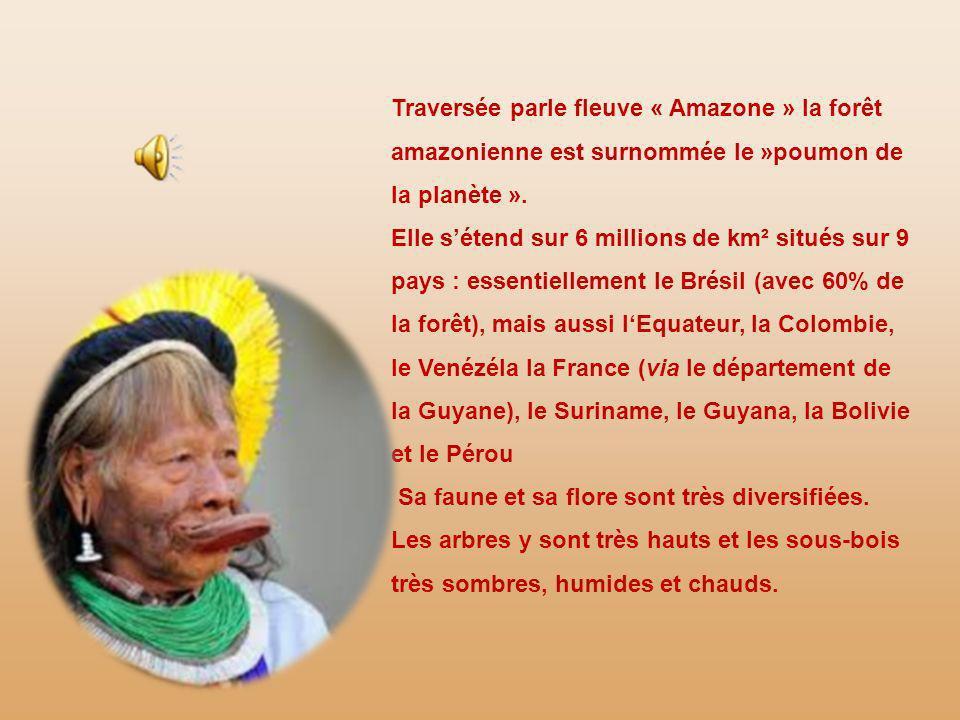 Traversée parle fleuve « Amazone » la forêt amazonienne est surnommée le »poumon de la planète ».
