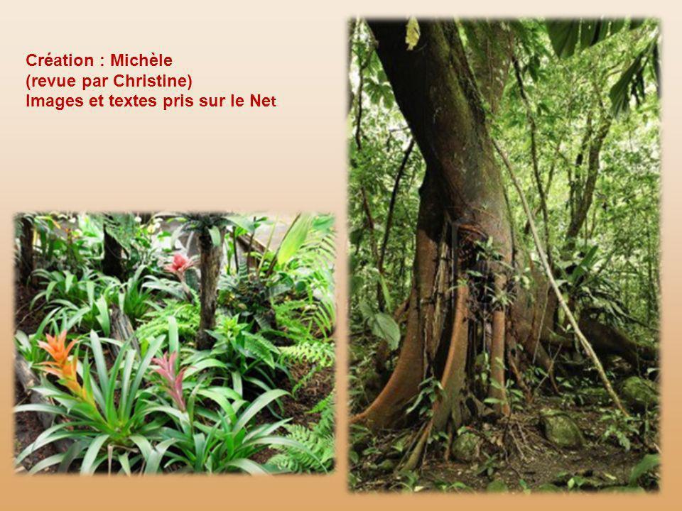 Création : Michèle (revue par Christine) Images et textes pris sur le Net