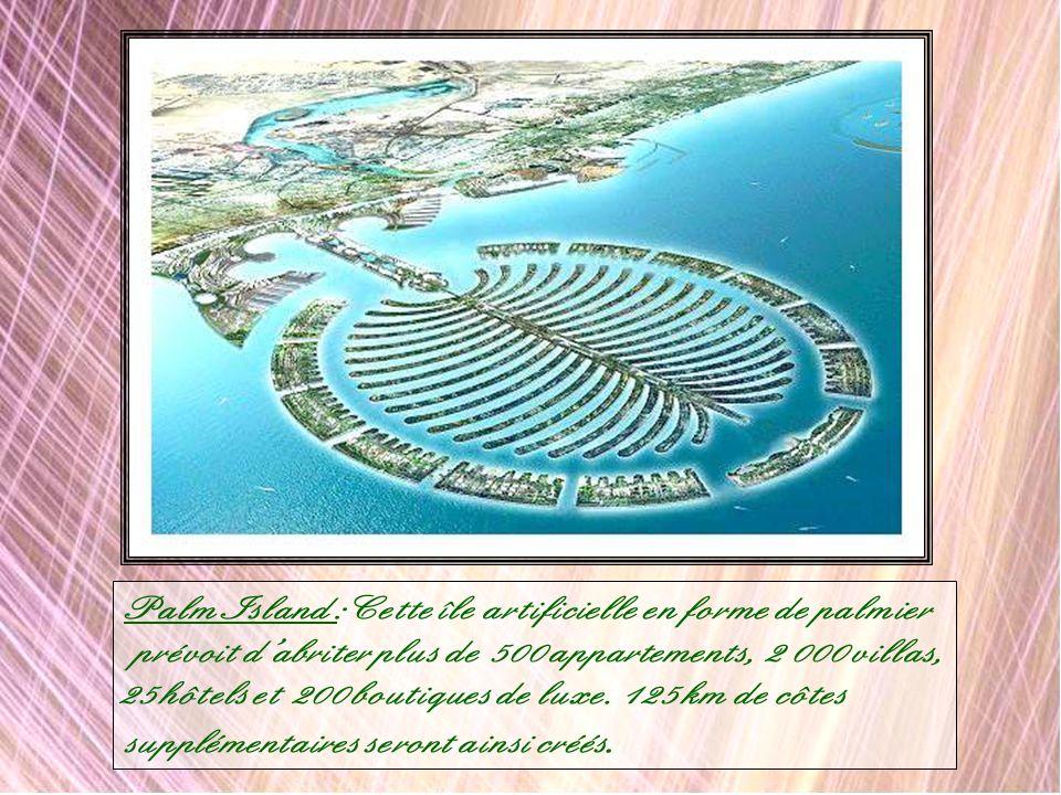 Palm Island :Cette île artificielle en forme de palmier