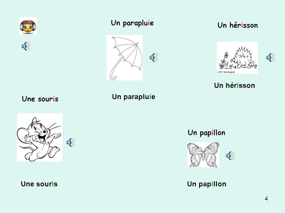 Un parapluie Un hérisson Un hérisson Un parapluie Une souris Un papillon Une souris Un papillon