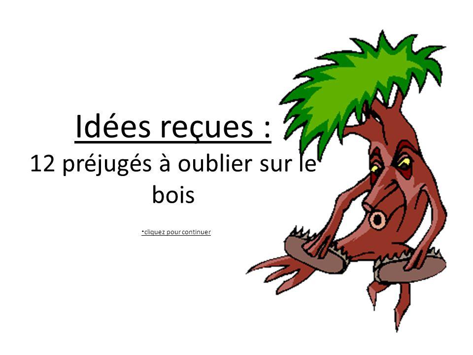 Idées reçues : 12 préjugés à oublier sur le bois