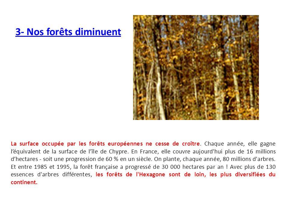 3- Nos forêts diminuent