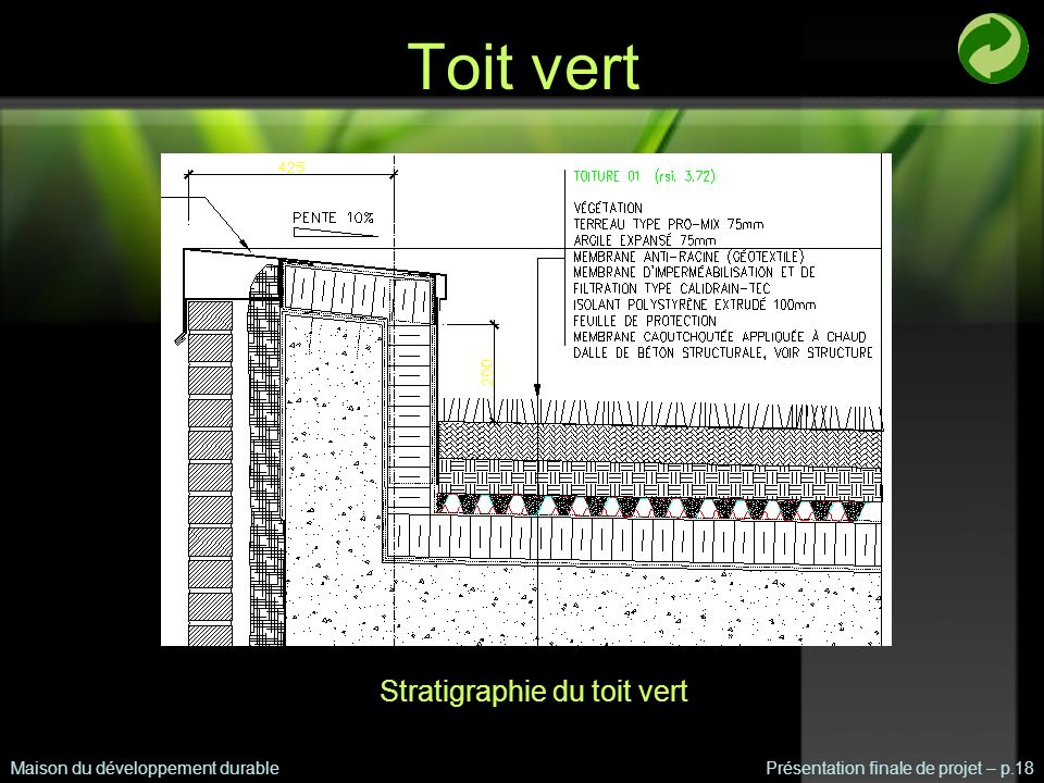 Stratigraphie du toit vert