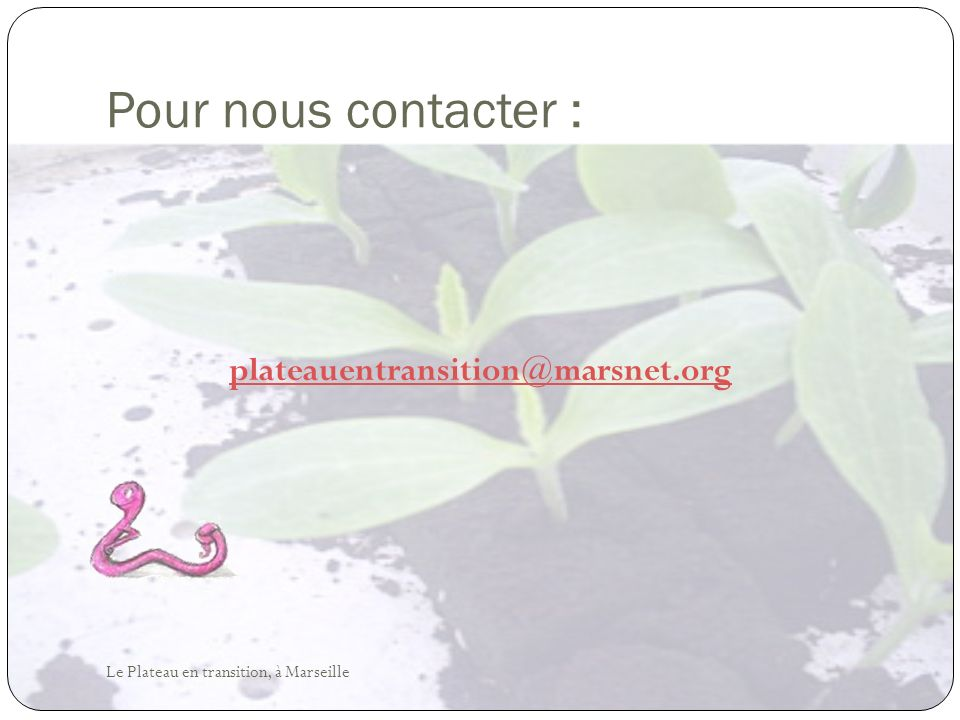 Pour nous contacter : plateauentransition@marsnet.org