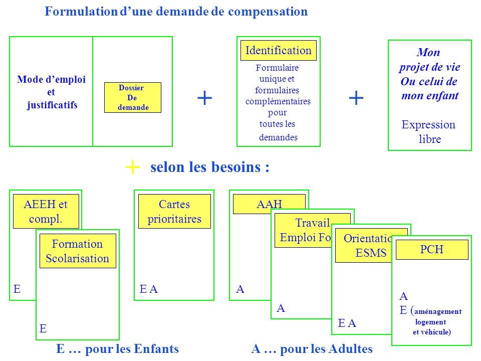 Formation Scolarisation