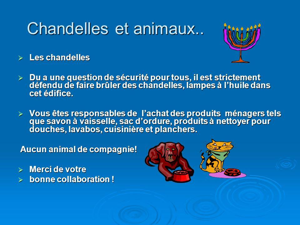 Chandelles et animaux.. Les chandelles