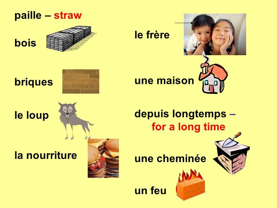 paille – straw bois. briques. le loup. la nourriture. le frère. une maison. depuis longtemps – for a long time.