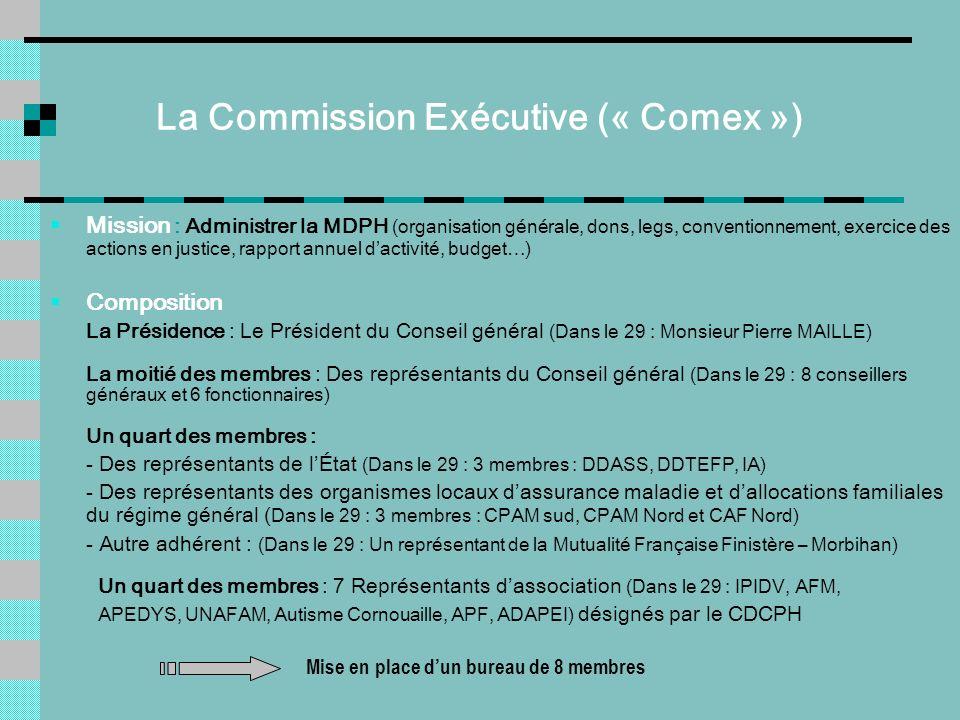 La Commission Exécutive (« Comex »)
