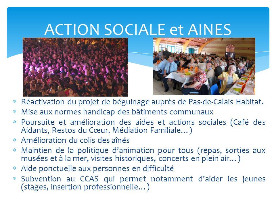 ACTION SOCIALE et AINES