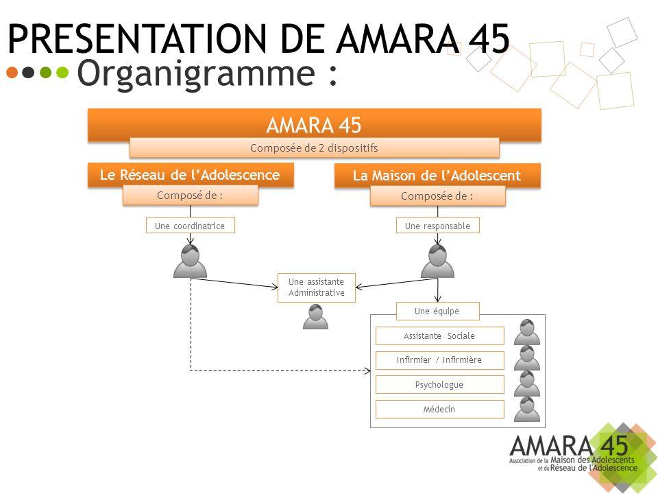 PRESENTATION DE AMARA 45 Organigramme : AMARA 45