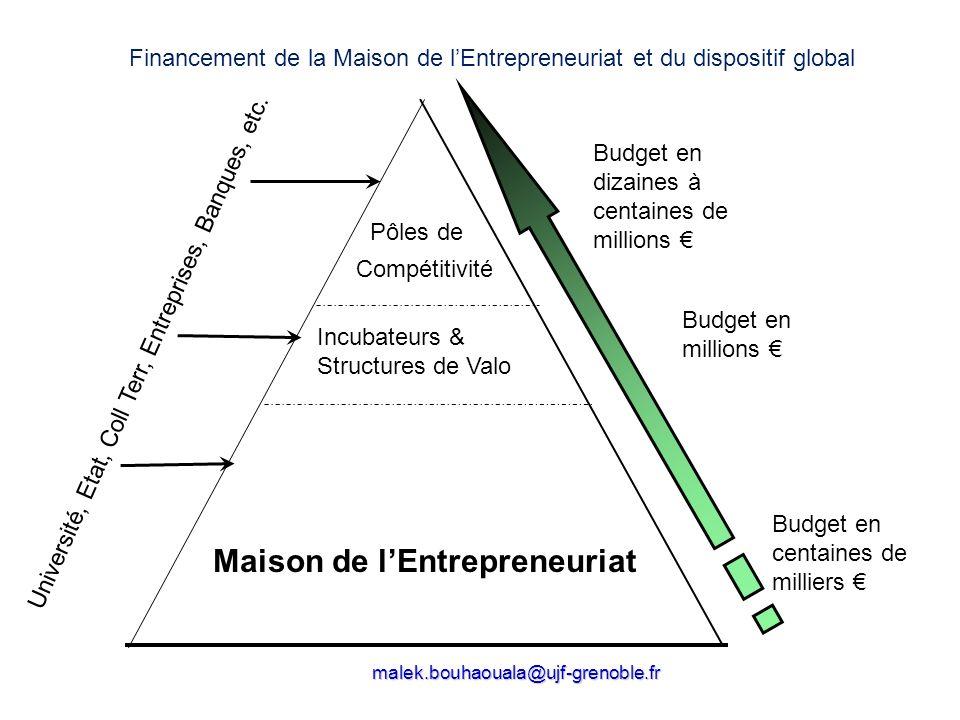 (création/reprise d'entreprise, association, profession libérale,