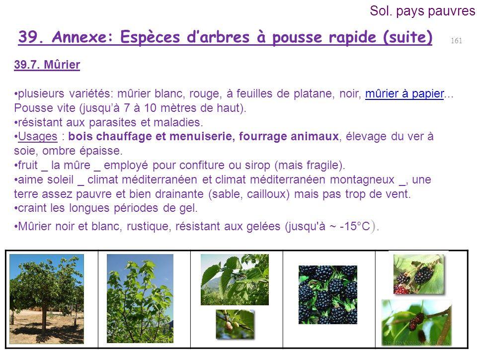 39. Annexe: Espèces d'arbres à pousse rapide (suite)