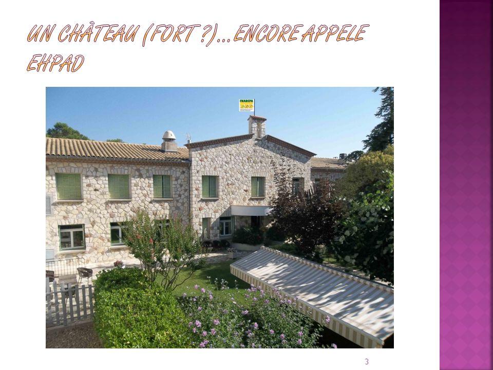 UN Château (FORT )…ENCORE APPELE EHPAD