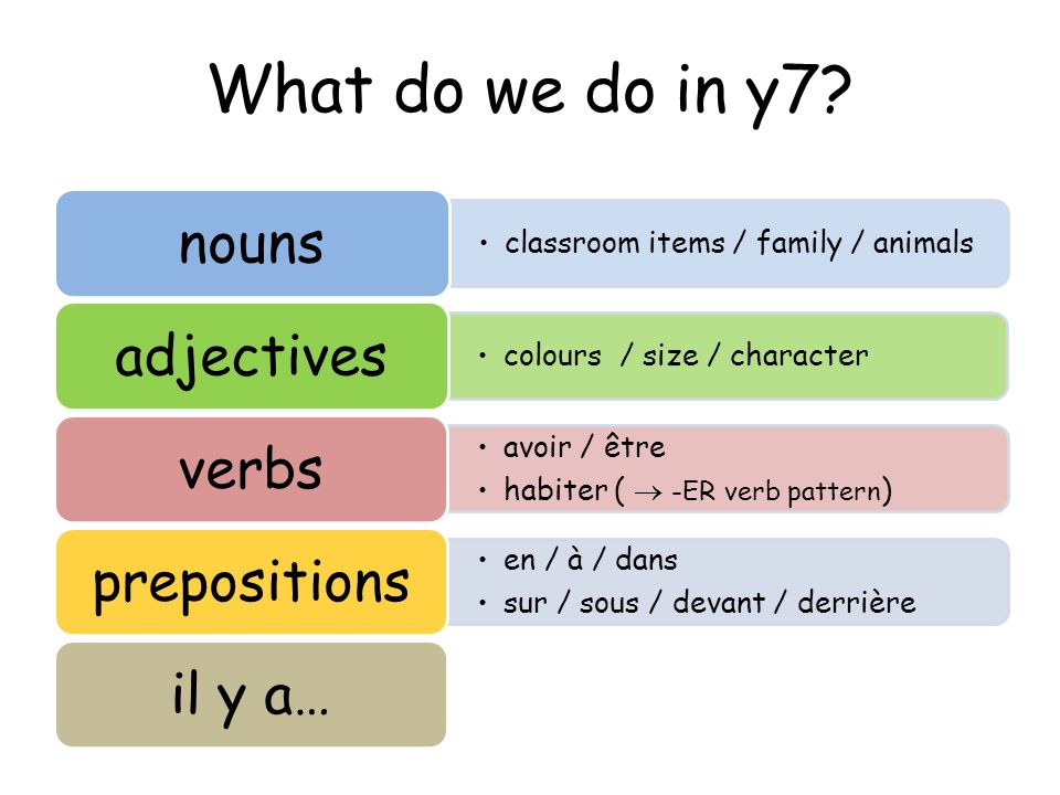 What do we do in y7 classroom items / family / animals