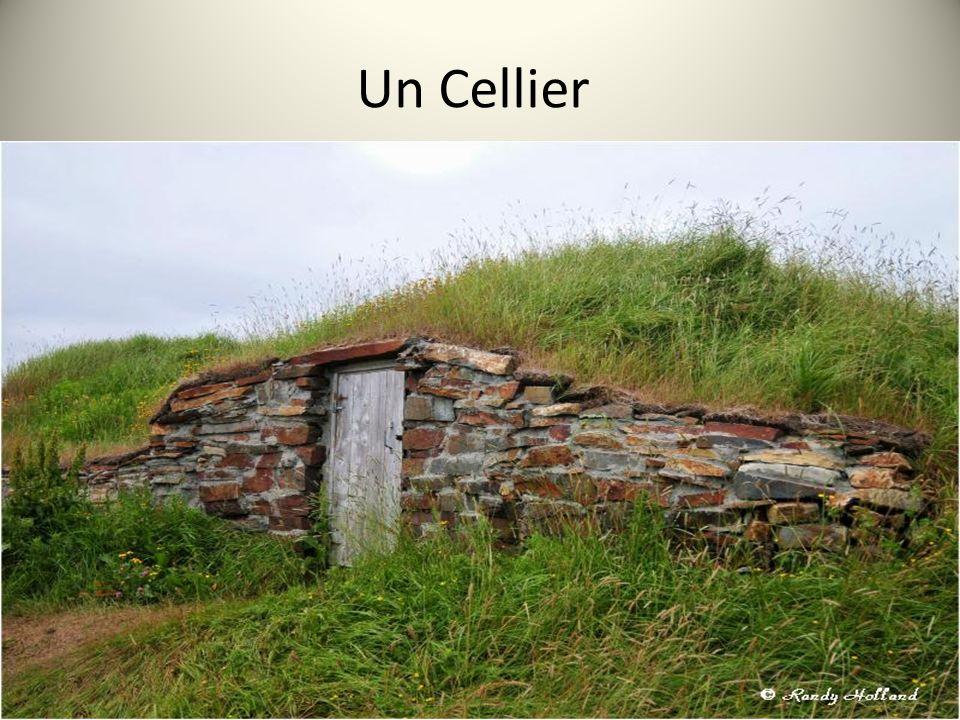 Un Cellier