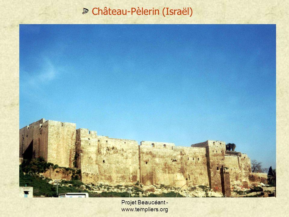 Château-Pèlerin (Israël)