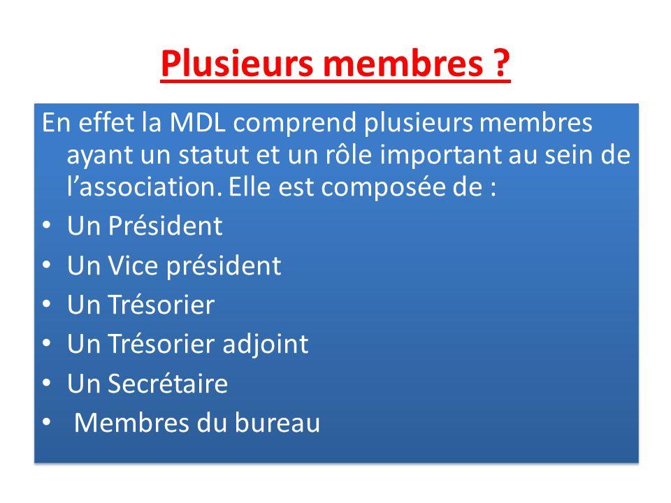 Plusieurs membres En effet la MDL comprend plusieurs membres ayant un statut et un rôle important au sein de l'association. Elle est composée de :