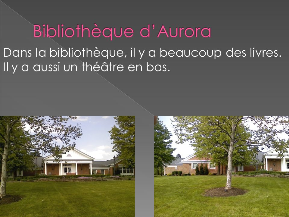 Bibliothèque d'Aurora