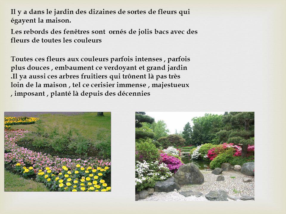 Il y a dans le jardin des dizaines de sortes de fleurs qui égayent la maison.