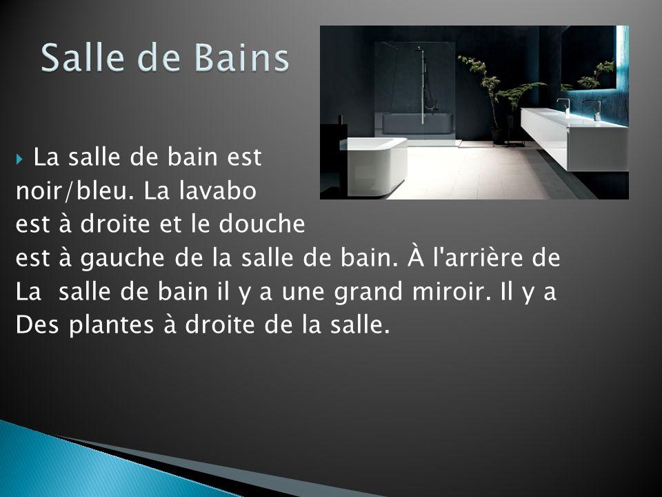 Salle de Bains La salle de bain est noir/bleu. La lavabo