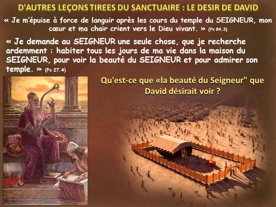D AUTRES LEÇONS TIREES DU SANCTUAIRE : LE DESIR DE DAVID