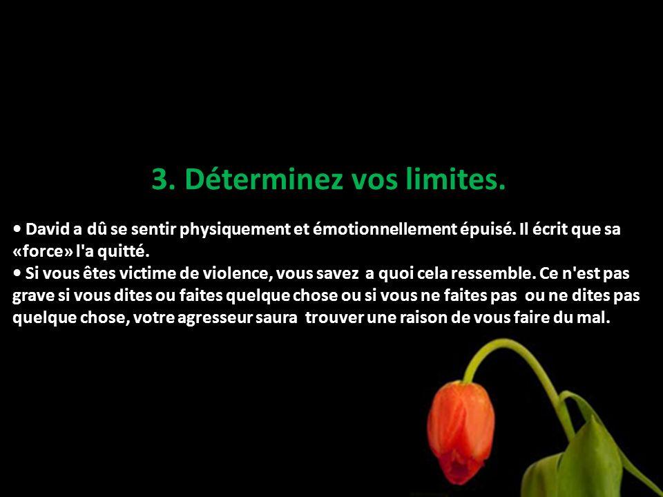 3. Déterminez vos limites.
