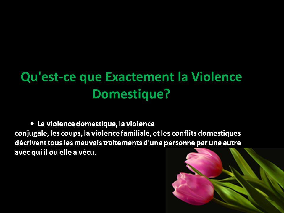 Qu est-ce que Exactement la Violence Domestique