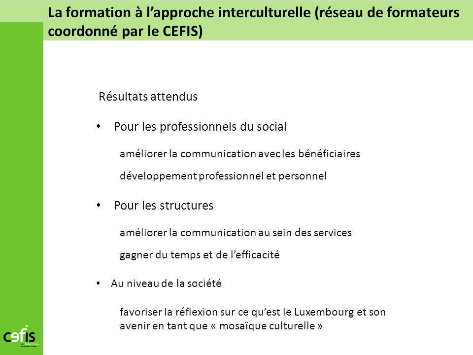 La formation à l'approche interculturelle (réseau de formateurs coordonné par le CEFIS)