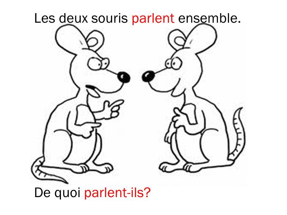 Les deux souris parlent ensemble.