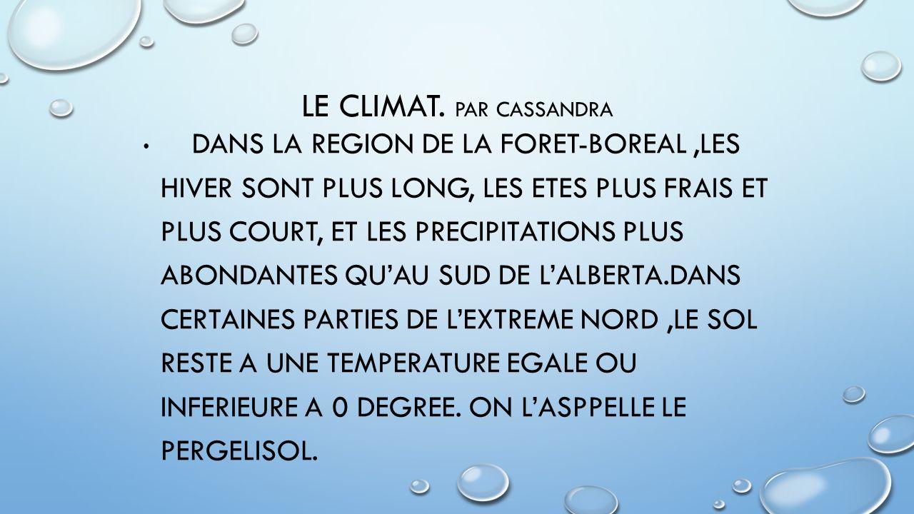 LE CLIMAT. Par Cassandra