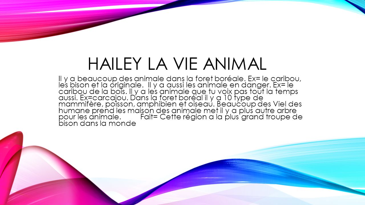 Hailey la vie animal