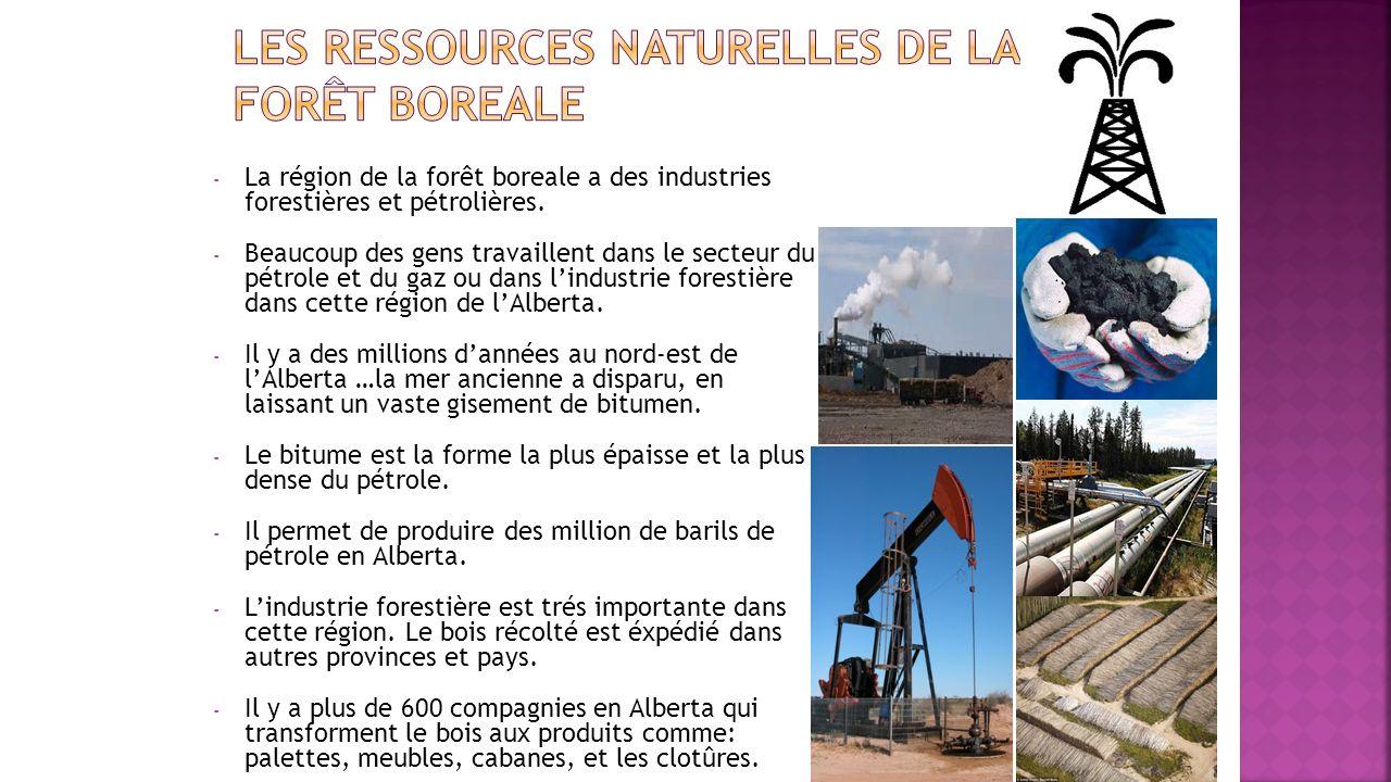 Les ressources naturelles de la forêt boreale