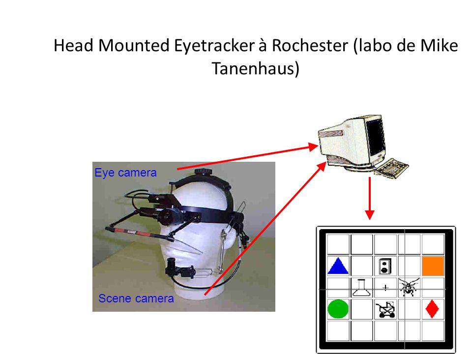 Head Mounted Eyetracker à Rochester (labo de Mike Tanenhaus)