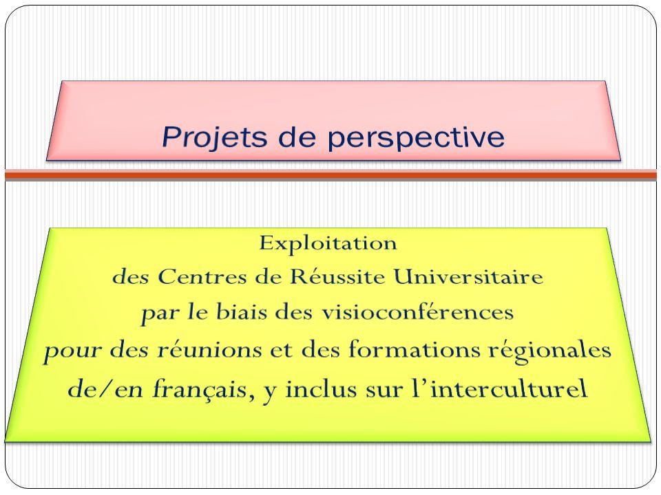 Projets de perspective