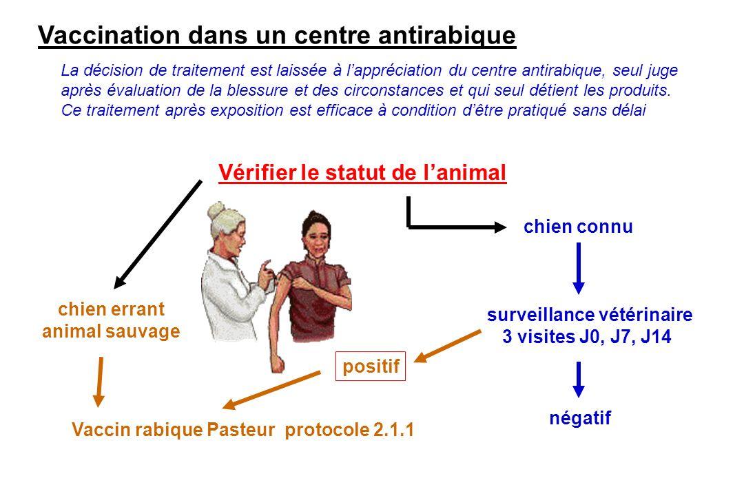 Vaccination dans un centre antirabique