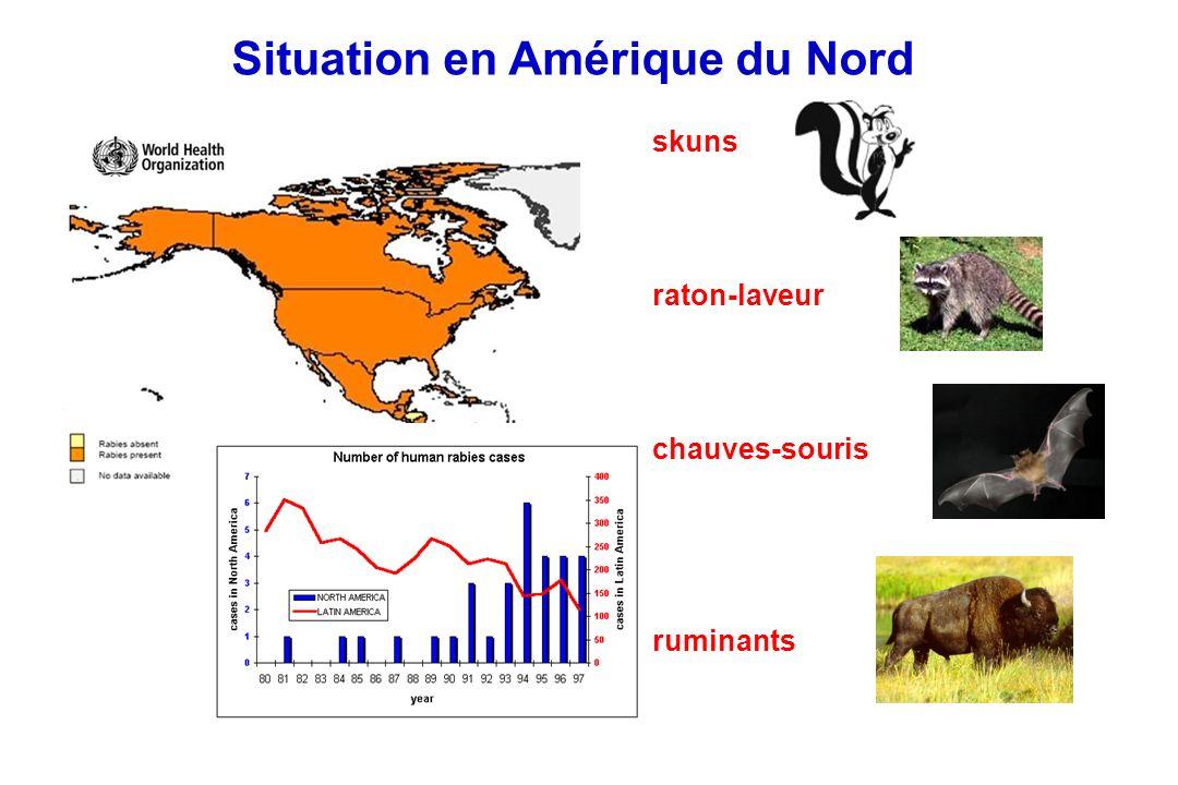 Situation en Amérique du Nord