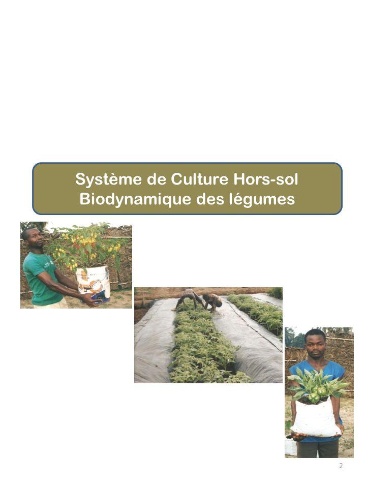 Système de Culture Hors-sol Biodynamique des légumes