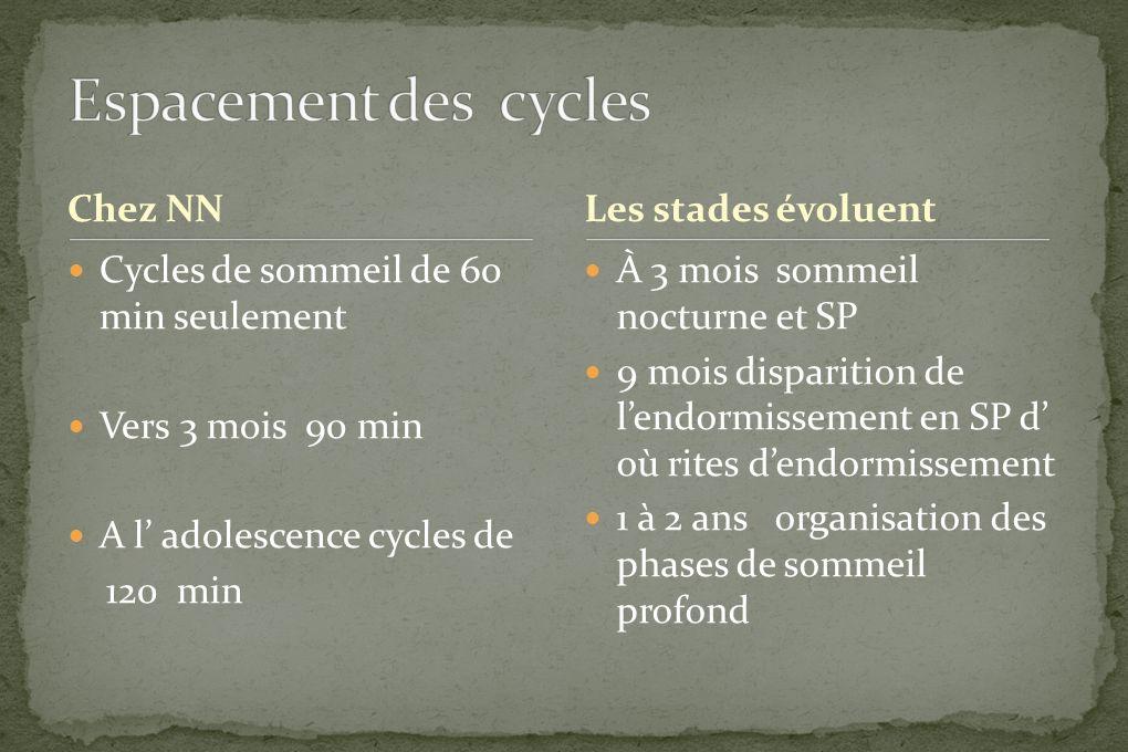 Espacement des cycles Chez NN Les stades évoluent