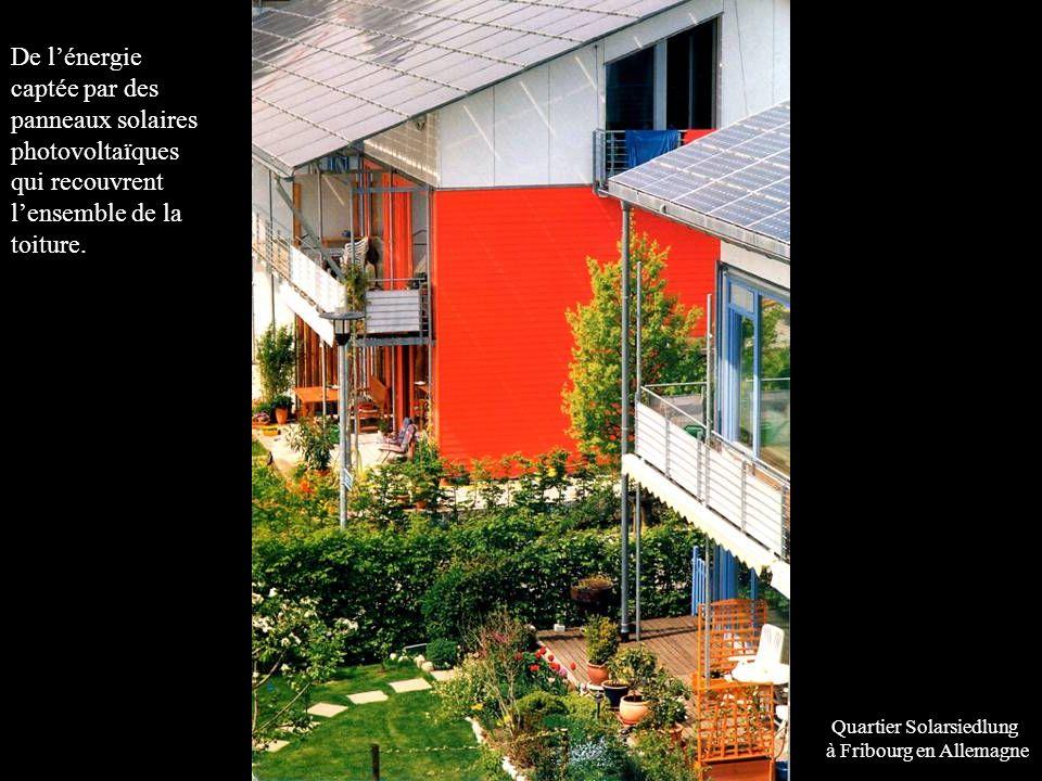 De l'énergie captée par des panneaux solaires photovoltaïques qui recouvrent l'ensemble de la toiture.
