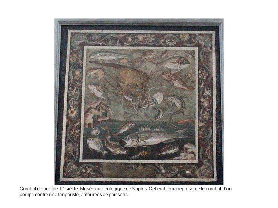 Combat de poulpe. II° siècle. Musée archéologique de Naples