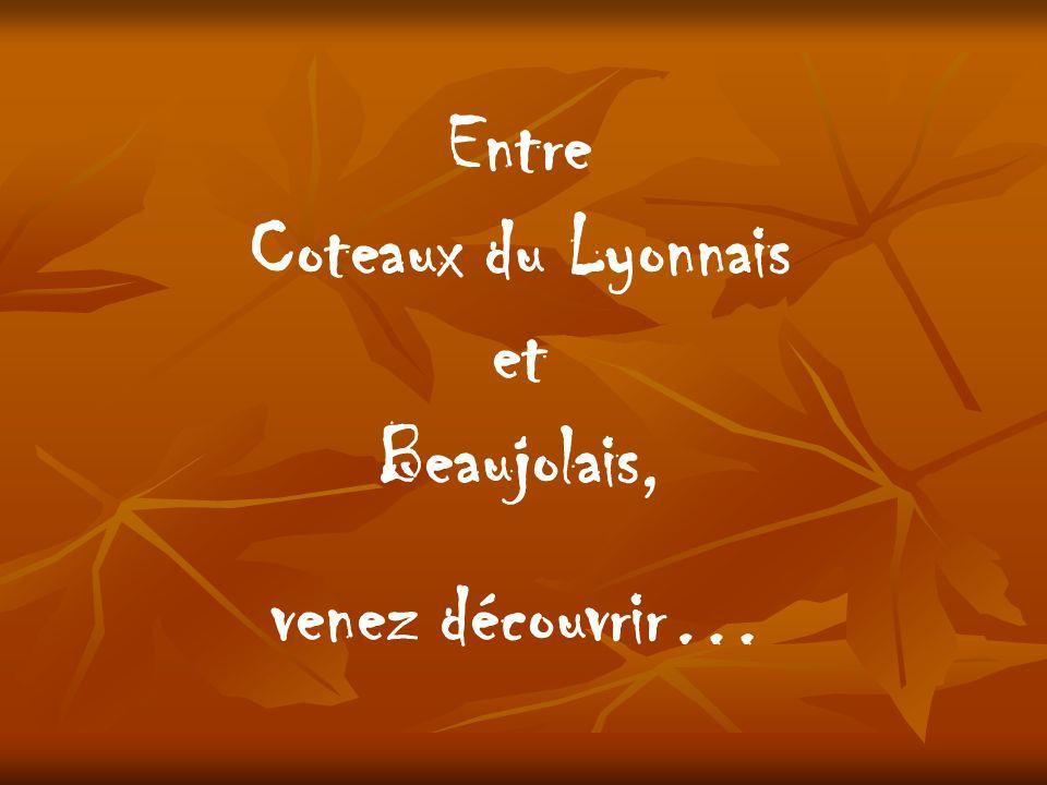 Entre Coteaux du Lyonnais et Beaujolais,