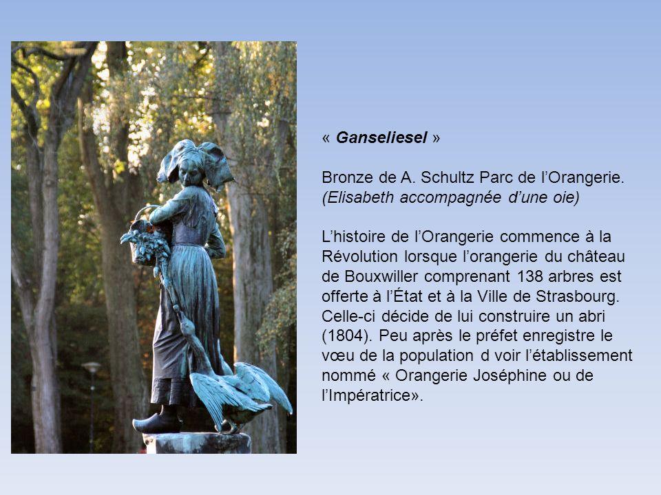 « Ganseliesel » Bronze de A. Schultz Parc de l'Orangerie