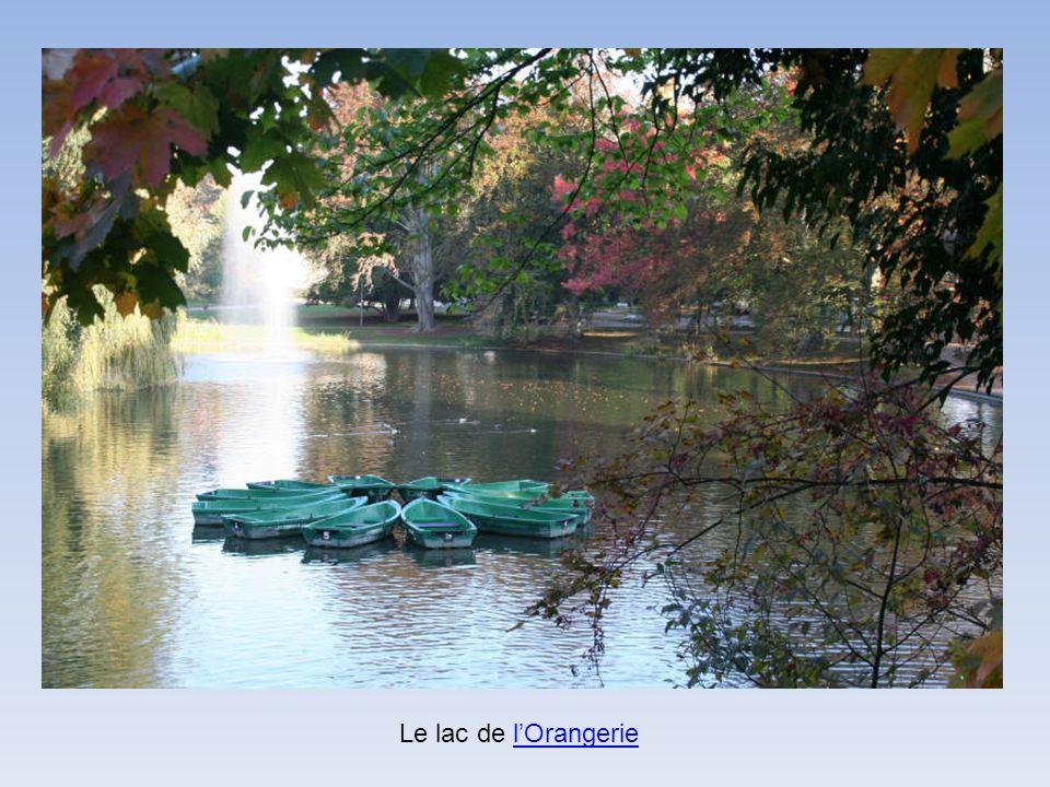 Le lac de l'Orangerie