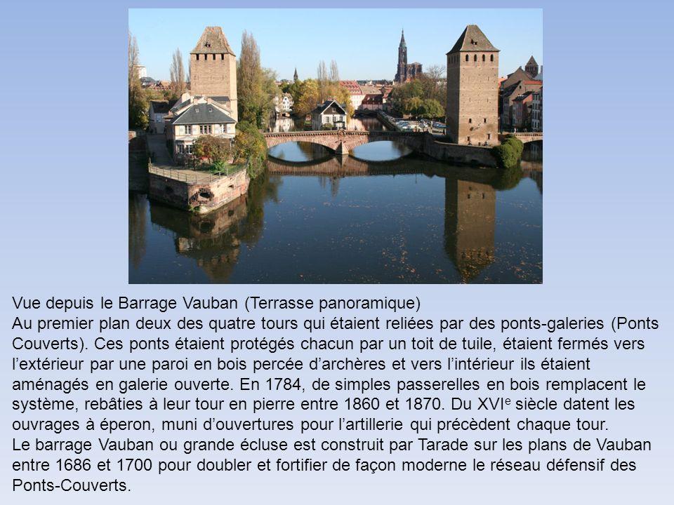 Vue depuis le Barrage Vauban (Terrasse panoramique)