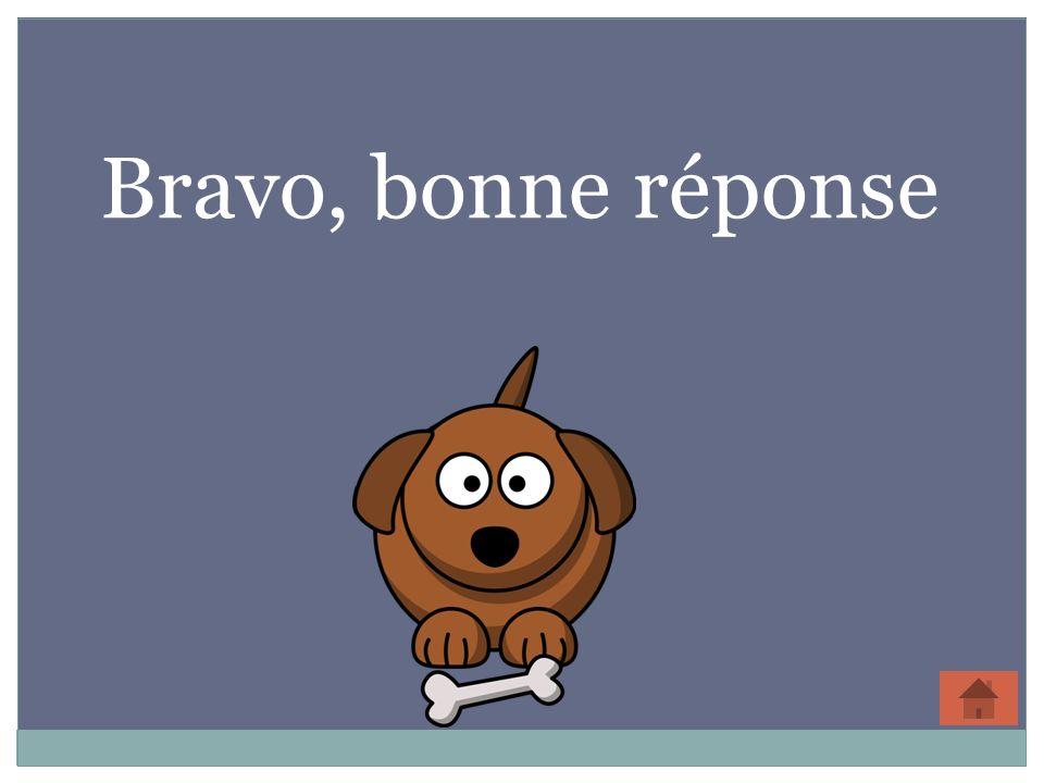 Bravo, bonne réponse 31