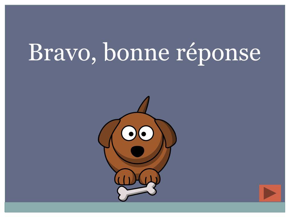 Bravo, bonne réponse 4