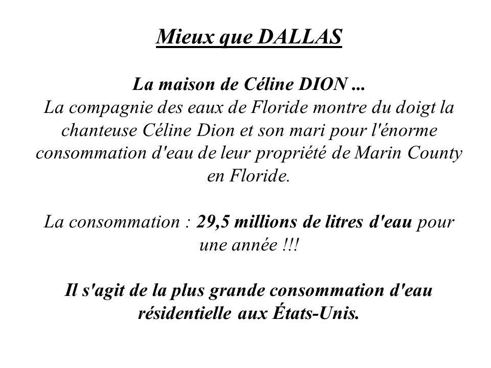 Mieux que DALLAS La maison de Céline DION