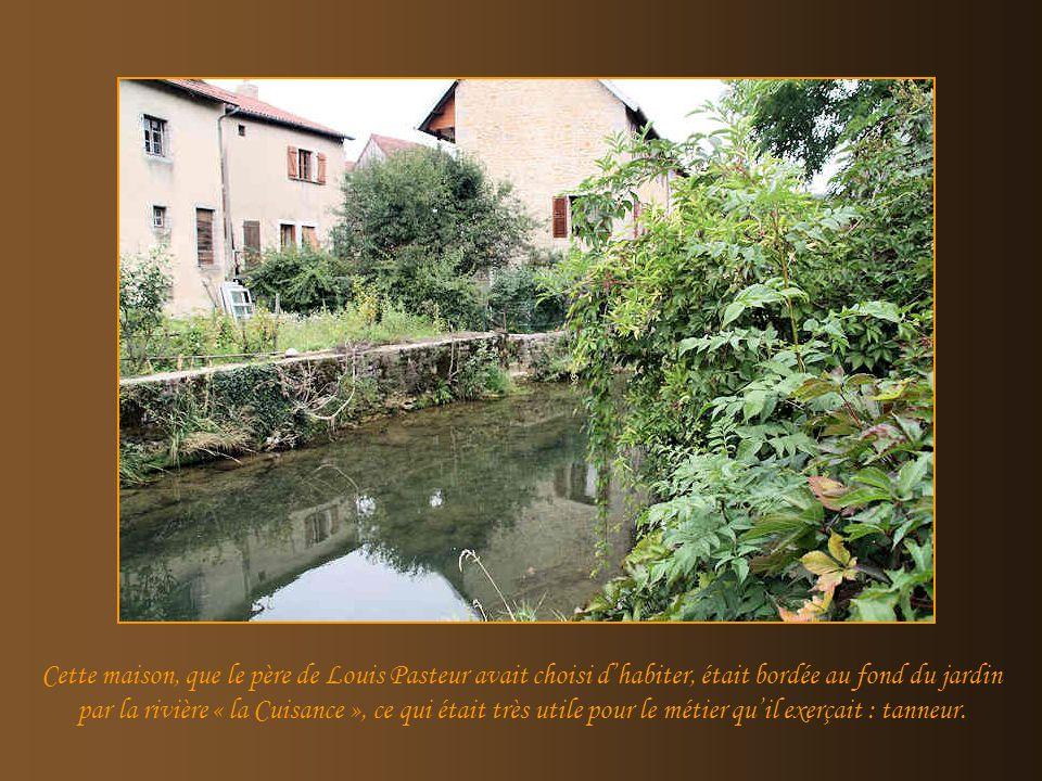 Cette maison, que le père de Louis Pasteur avait choisi d'habiter, était bordée au fond du jardin par la rivière « la Cuisance », ce qui était très utile pour le métier qu'il exerçait : tanneur.