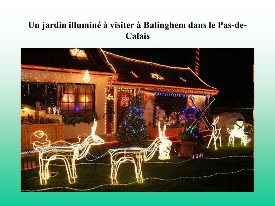 Un jardin illuminé à visiter à Balinghem dans le Pas-de-Calais
