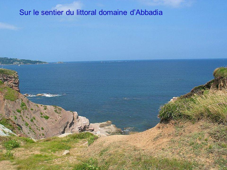 Sur le sentier du littoral domaine d'Abbadia